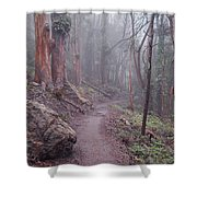 Cloud Forest- Mount Sutro Shower Curtain