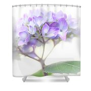 Misty Hydrangea Flower Shower Curtain