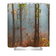 Misty Indian Morning Shower Curtain