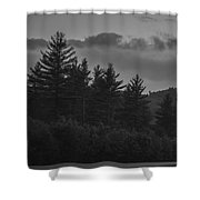 Misty Maine Woods Black And White 2 Shower Curtain