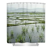 Misty Morning In China Shower Curtain