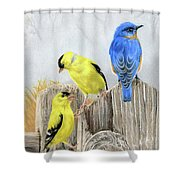 Misty Morning Meadow- Goldfinches And Bluebird Shower Curtain