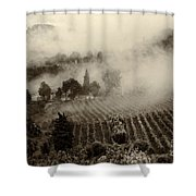 Misty Morning Shower Curtain by Silvia Ganora
