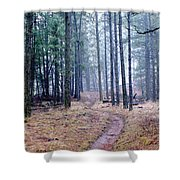Misty Morning Trail In The Woods Shower Curtain