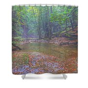 Misty Morning Woodscape Two Shower Curtain