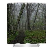 Misty Path Shower Curtain