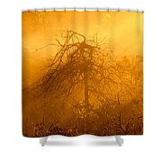 Misty Swamp Sunrise Shower Curtain