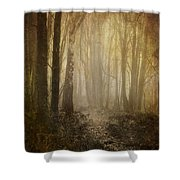 Misty Woodland Path Shower Curtain by Meirion Matthias