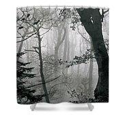 Misty Woods, Juniper Shower Curtain