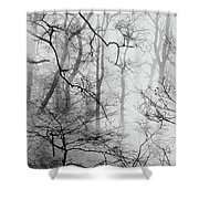 Misty Woods, Whitley Mill Shower Curtain