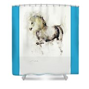 Mito Shower Curtain