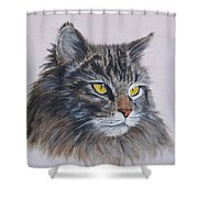 Mitze Maine Coon Cat Shower Curtain