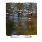 Mixed Frogs Hands Up Shower Curtain