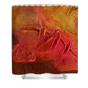 Mixed Media 06 By Rafi Talby Shower Curtain
