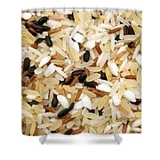 Mixed Rice Shower Curtain by Fabrizio Troiani