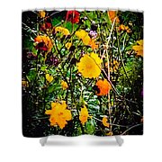 Mixture Of Flowers On Summer Day Shower Curtain