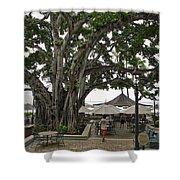 Moana Surfrider Banyan Court - Waikiki Beach Shower Curtain