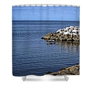 Mobile Bay 4 Shower Curtain