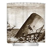 Moby Dick Both Jaws, Like Enormous Shears Bit The Craft Complete In Half Shower Curtain