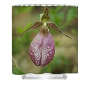 Moccasin Flower Shower Curtain