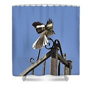 Mockingbird Landing On Fence Shower Curtain