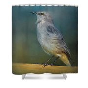 Mockingbird On A Windy Day Shower Curtain