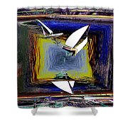 Model Sailboats Shower Curtain