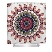 Modern Mandala Art 28 Shower Curtain