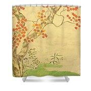 Modern Reflection Of Sakai Hoitsu Shower Curtain
