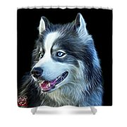 Modern Siberian Husky Dog Art - 6024 - Bb Shower Curtain