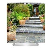 Modern Suburban House With Succulent Garden Hayward California 34 Shower Curtain