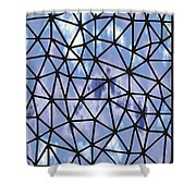 Modern Web Shower Curtain