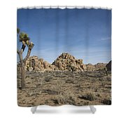 Mohave Desert Shower Curtain