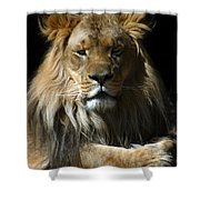 Mohawk Shower Curtain