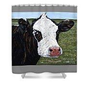 Mohawk Cow Shower Curtain
