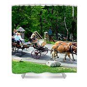 Mohonk Carriage Tour Shower Curtain
