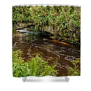 Moira Gate Shower Curtain