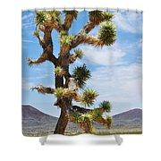 Mojave Joshua Tree Shower Curtain