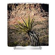Mojave Yucca Shower Curtain