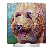 Mojo The Shaggy Dog Shower Curtain