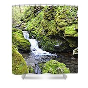 Moine Panorama 2 Shower Curtain