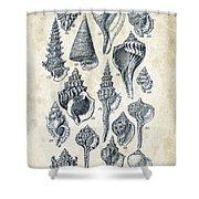 Mollusks - 1842 - 17 Shower Curtain