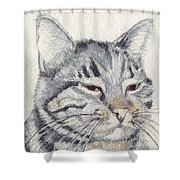 Molly Mischief Shower Curtain