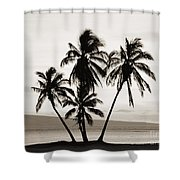 Molokai Palms Shower Curtain