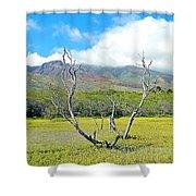Molokai Surrealism Shower Curtain