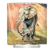 Mom And Baby Elephant Shower Curtain