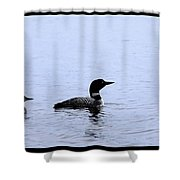 Mom And Baby Loon Shower Curtain