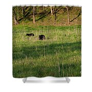 Mom And Cub Shower Curtain
