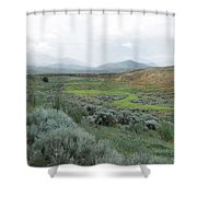 Moment  Shower Curtain