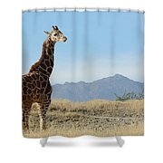 Moment Of Independence Shower Curtain